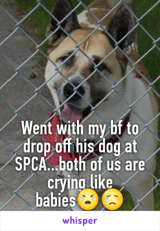 Went with my bf to drop off his dog at SPCA...both of us are crying like babies😭😢