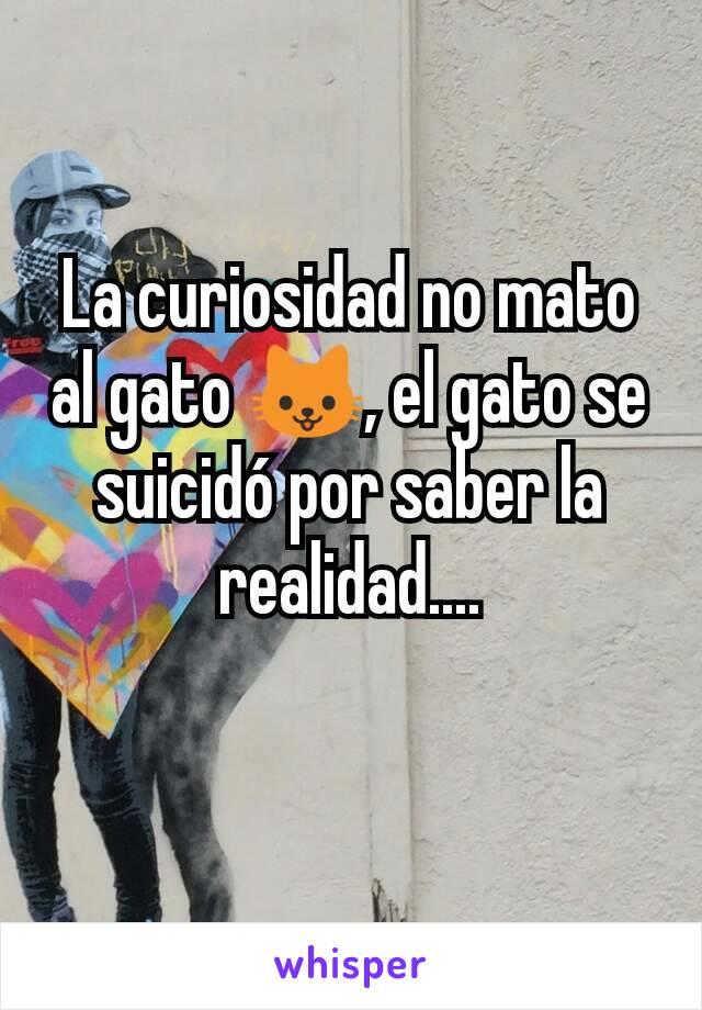 La curiosidad no mato al gato 🐱, el gato se suicidó por saber la realidad....