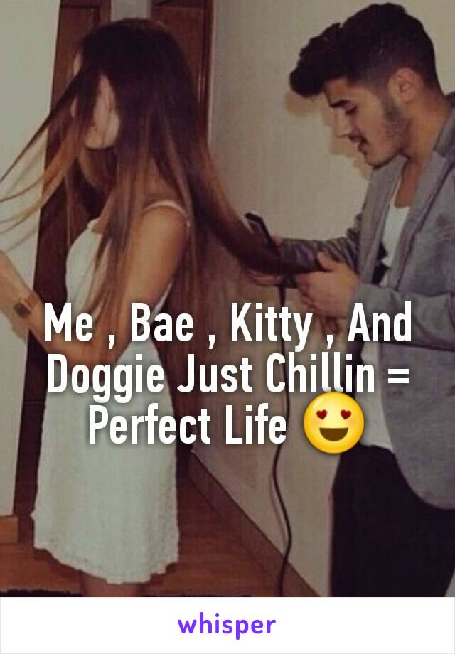 Me , Bae , Kitty , And Doggie Just Chillin = Perfect Life 😍