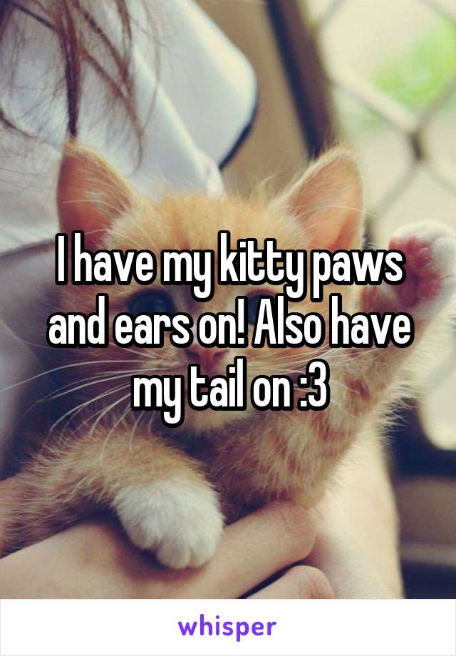 I have my kitty paws and ears on! Also have my tail on :3