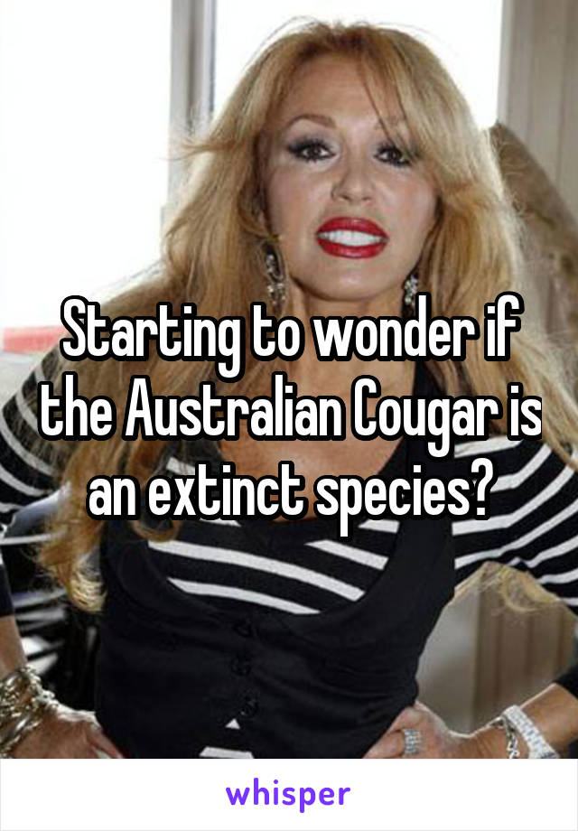 Starting to wonder if the Australian Cougar is an extinct species?