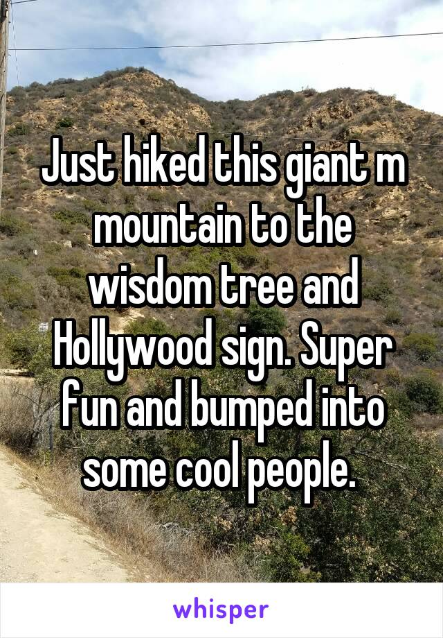 Just hiked this giant m mountain to the wisdom tree and Hollywood sign. Super fun and bumped into some cool people.