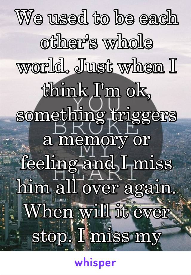 We used to be each other's whole world. Just when I think I'm ok, something triggers a memory or feeling and I miss him all over again. When will it ever stop. I miss my muscle man.
