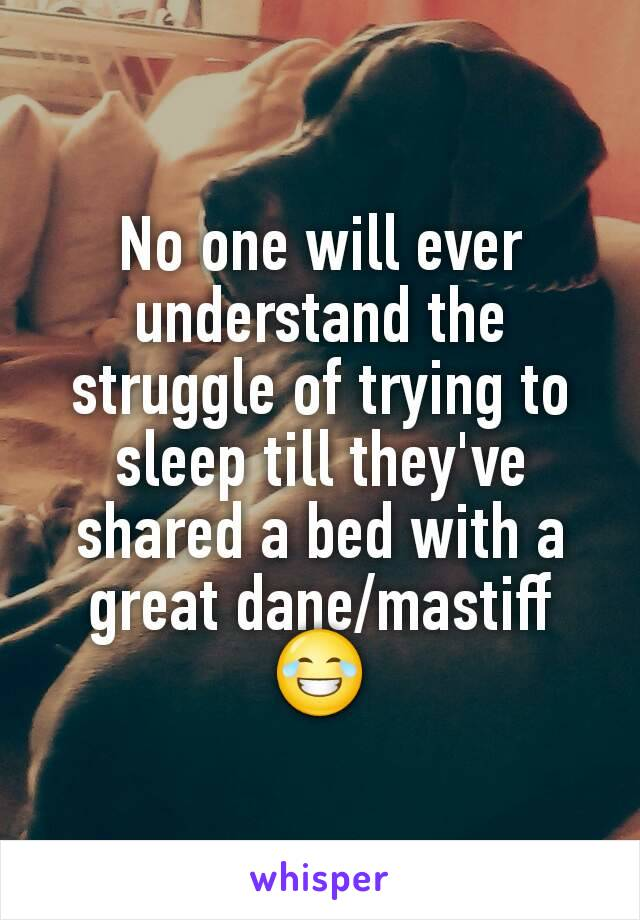 No one will ever understand the struggle of trying to sleep till they've shared a bed with a great dane/mastiff 😂