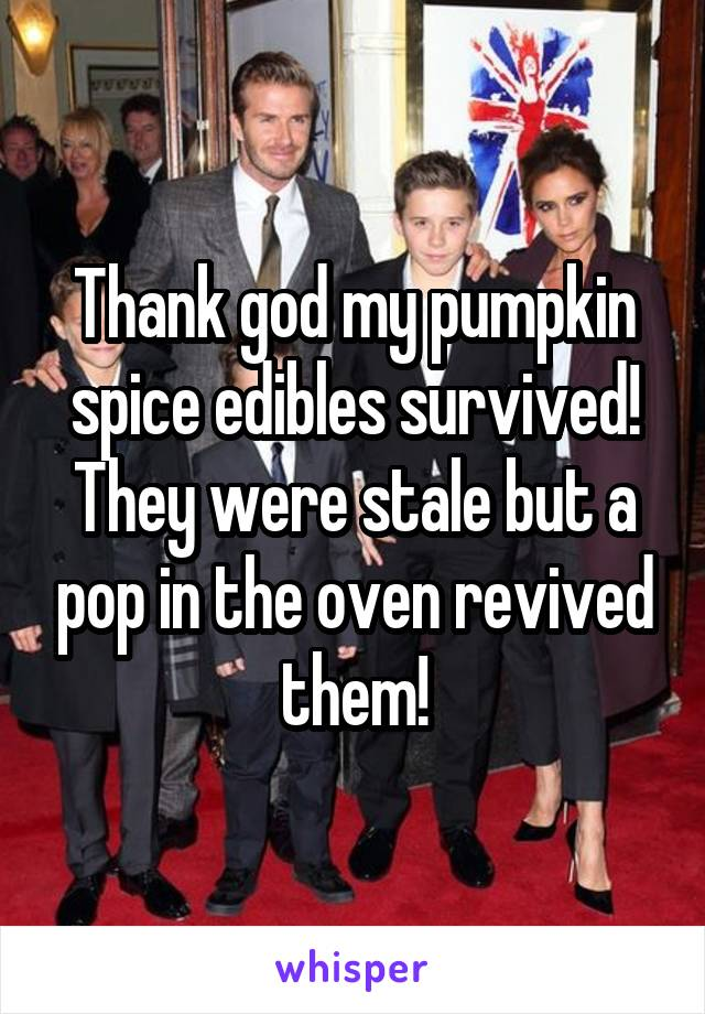 Thank god my pumpkin spice edibles survived! They were stale but a pop in the oven revived them!