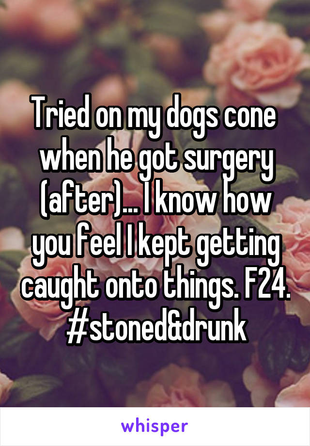 Tried on my dogs cone  when he got surgery (after)... I know how you feel I kept getting caught onto things. F24. #stoned&drunk