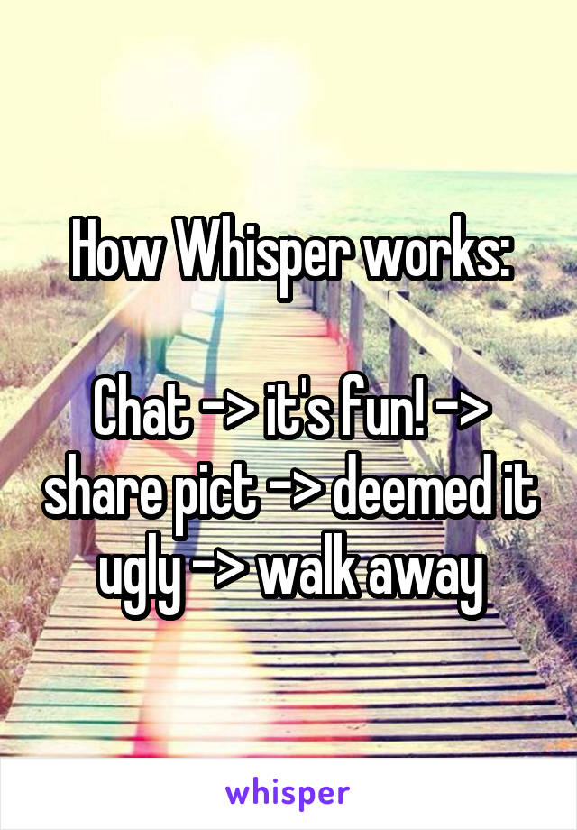 How Whisper works:  Chat -> it's fun! -> share pict -> deemed it ugly -> walk away