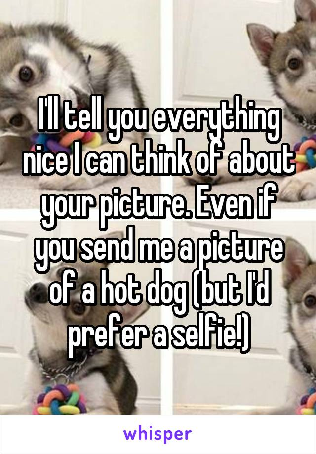 I'll tell you everything nice I can think of about your picture. Even if you send me a picture of a hot dog (but I'd prefer a selfie!)