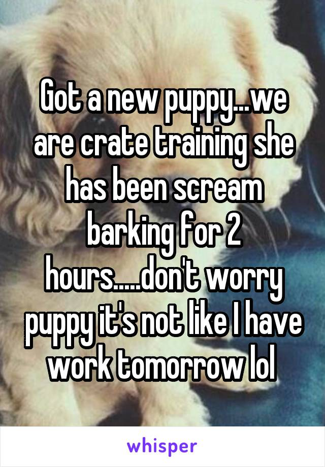 Got a new puppy...we are crate training she has been scream barking for 2 hours.....don't worry puppy it's not like I have work tomorrow lol
