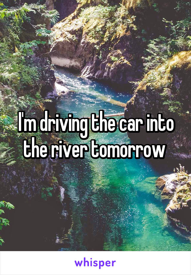 I'm driving the car into the river tomorrow