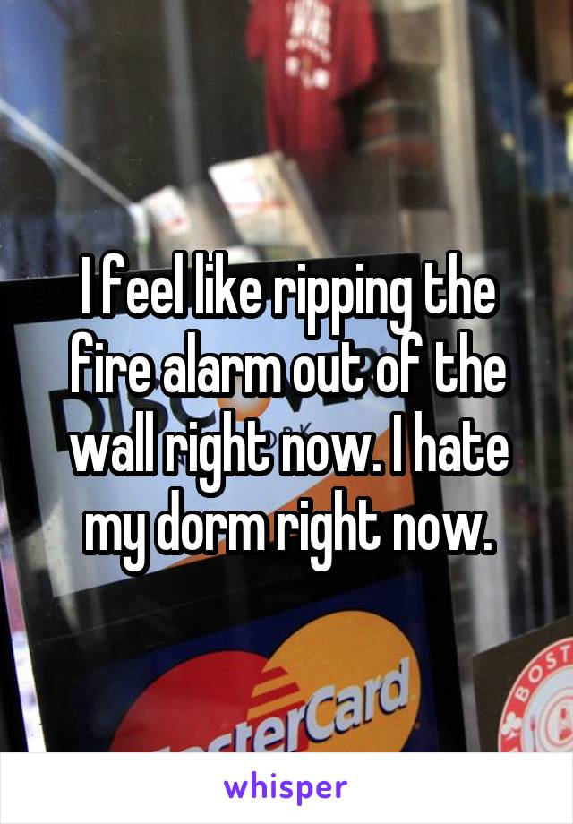I feel like ripping the fire alarm out of the wall right now. I hate my dorm right now.