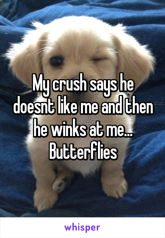 My crush says he doesnt like me and then he winks at me... Butterflies