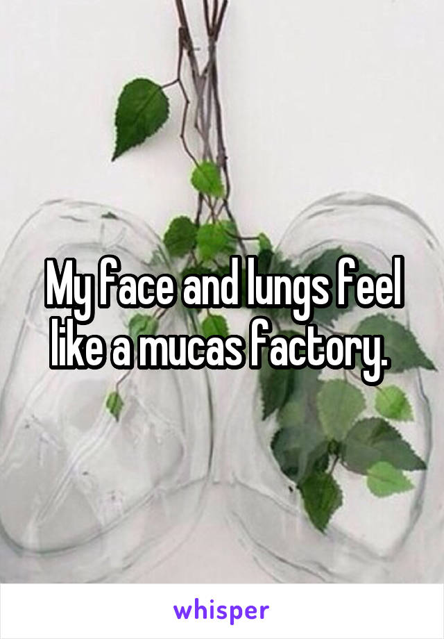 My face and lungs feel like a mucas factory.