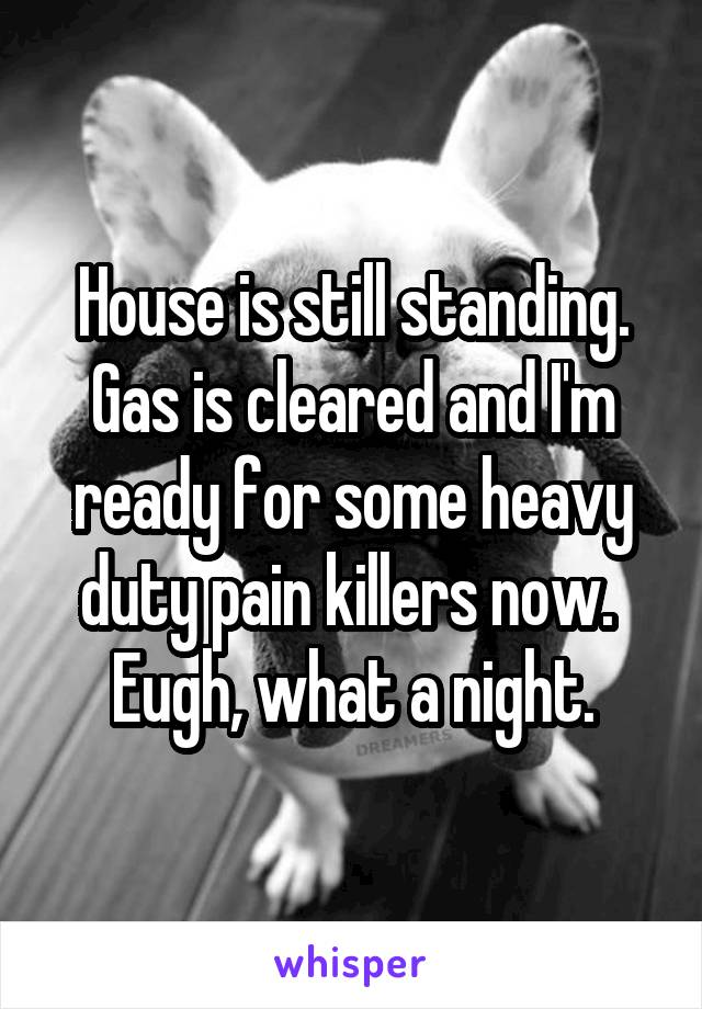 House is still standing. Gas is cleared and I'm ready for some heavy duty pain killers now.  Eugh, what a night.