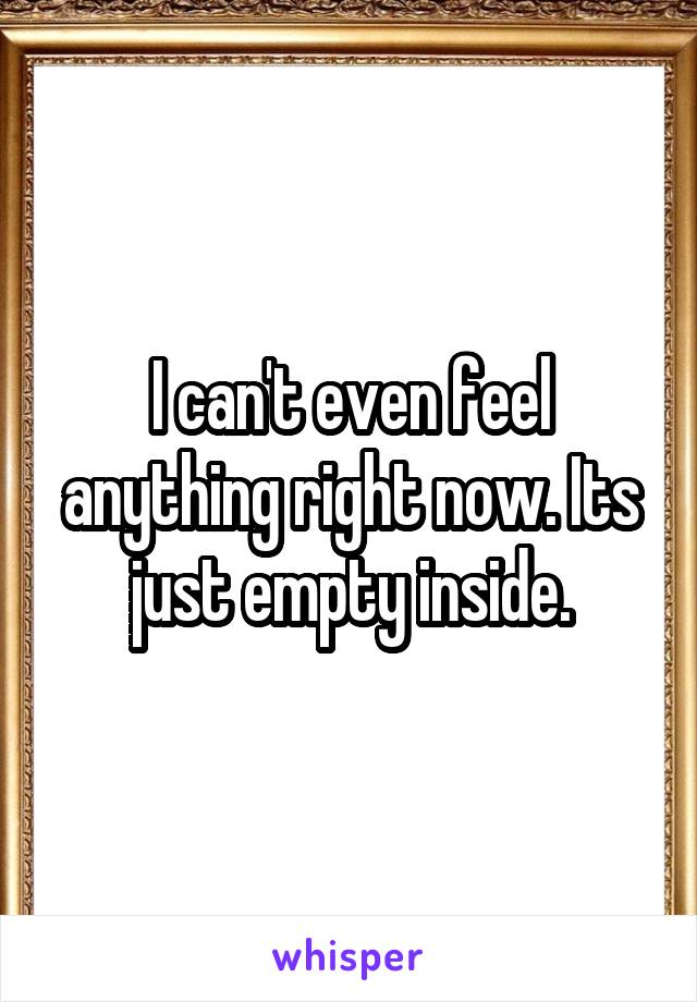 I can't even feel anything right now. Its just empty inside.