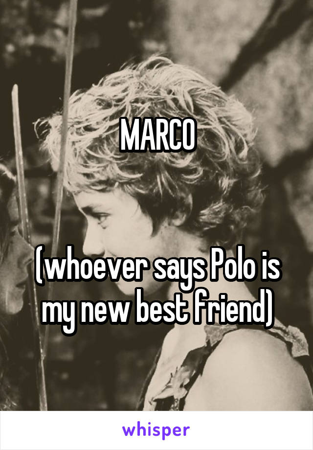 MARCO   (whoever says Polo is my new best friend)