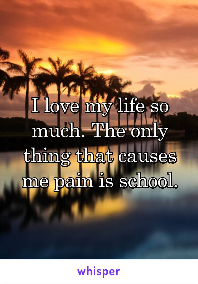 I love my life so much. The only thing that causes me pain is school.