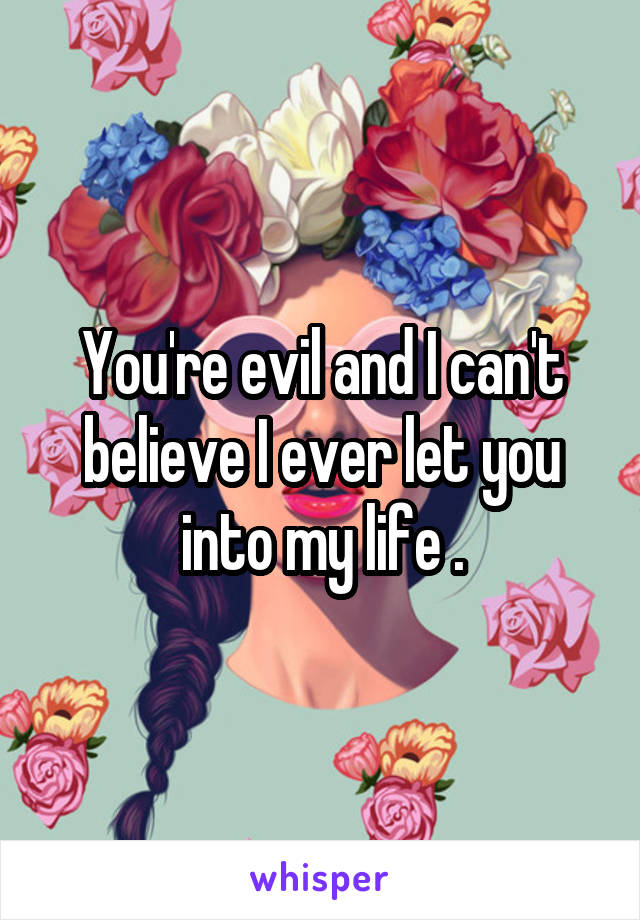You're evil and I can't believe I ever let you into my life .
