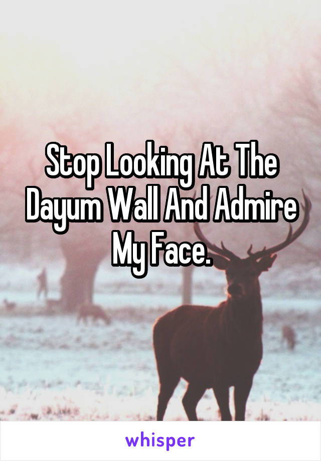 Stop Looking At The Dayum Wall And Admire My Face.