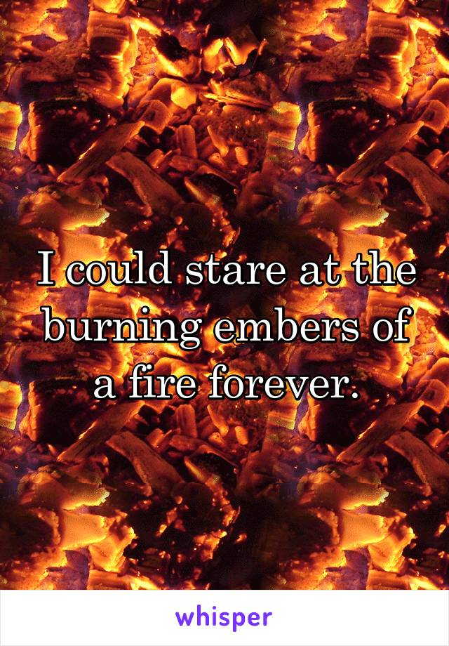 I could stare at the burning embers of a fire forever.