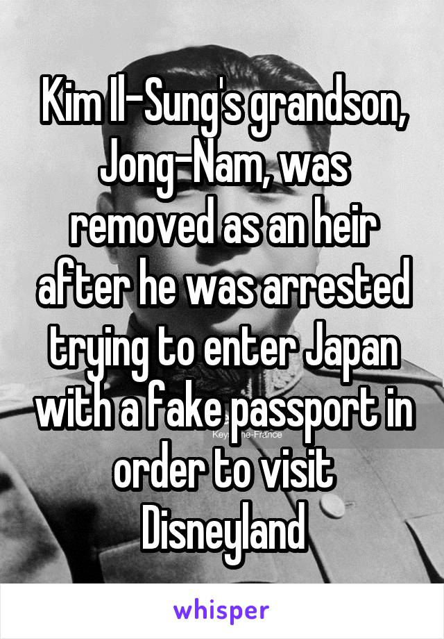 Kim Il-Sung's grandson, Jong-Nam, was removed as an heir after he was arrested trying to enter Japan with a fake passport in order to visit Disneyland
