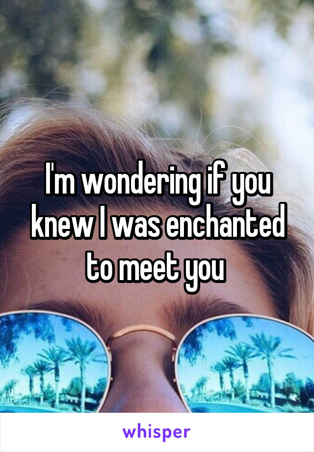 I'm wondering if you knew I was enchanted to meet you