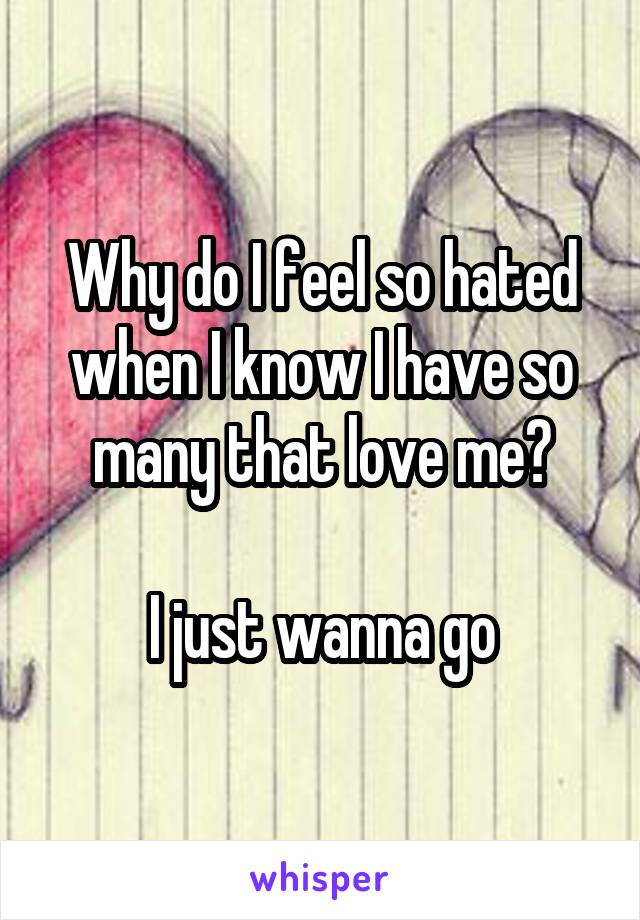 Why do I feel so hated when I know I have so many that love me?  I just wanna go