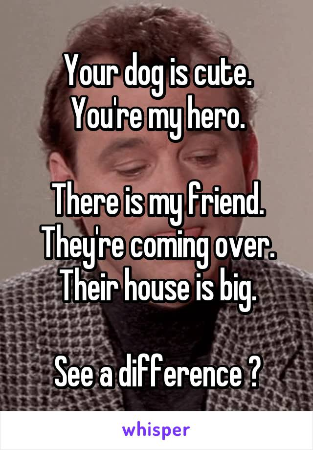 Your dog is cute. You're my hero.  There is my friend. They're coming over. Their house is big.  See a difference ?