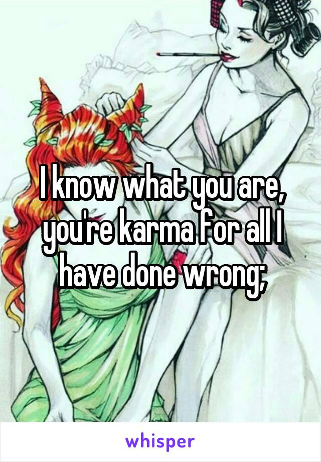 I know what you are, you're karma for all I have done wrong;