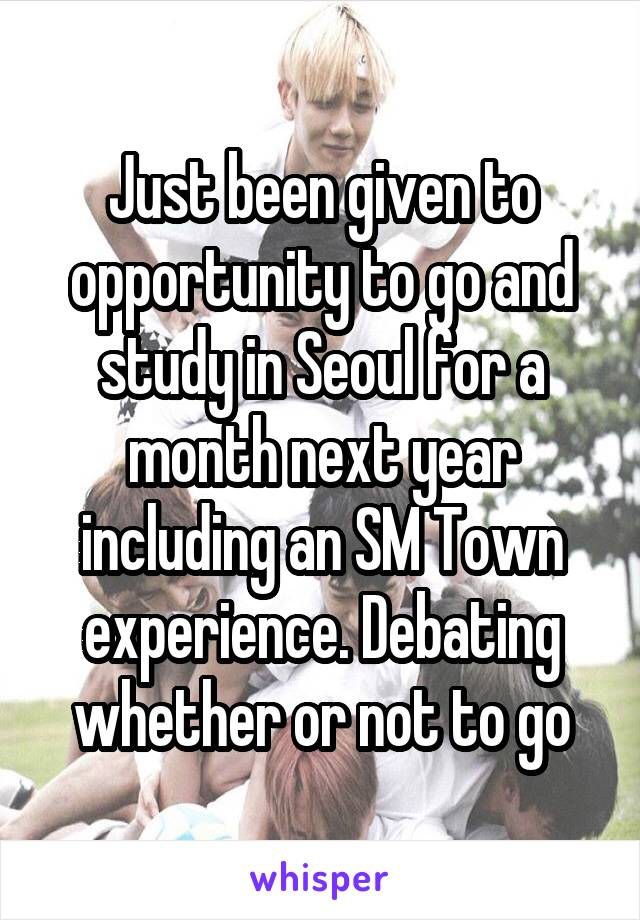 Just been given to opportunity to go and study in Seoul for a month next year including an SM Town experience. Debating whether or not to go
