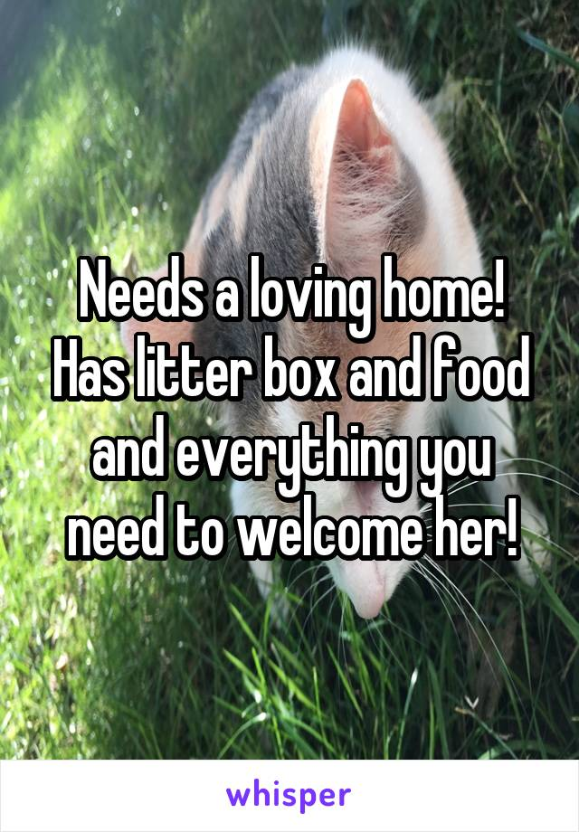 Needs a loving home! Has litter box and food and everything you need to welcome her!
