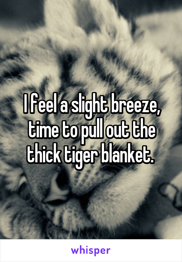 I feel a slight breeze, time to pull out the thick tiger blanket.