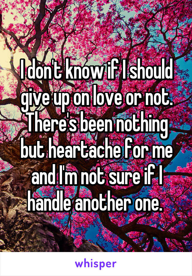 I don't know if I should give up on love or not. There's been nothing but heartache for me and I'm not sure if I handle another one.