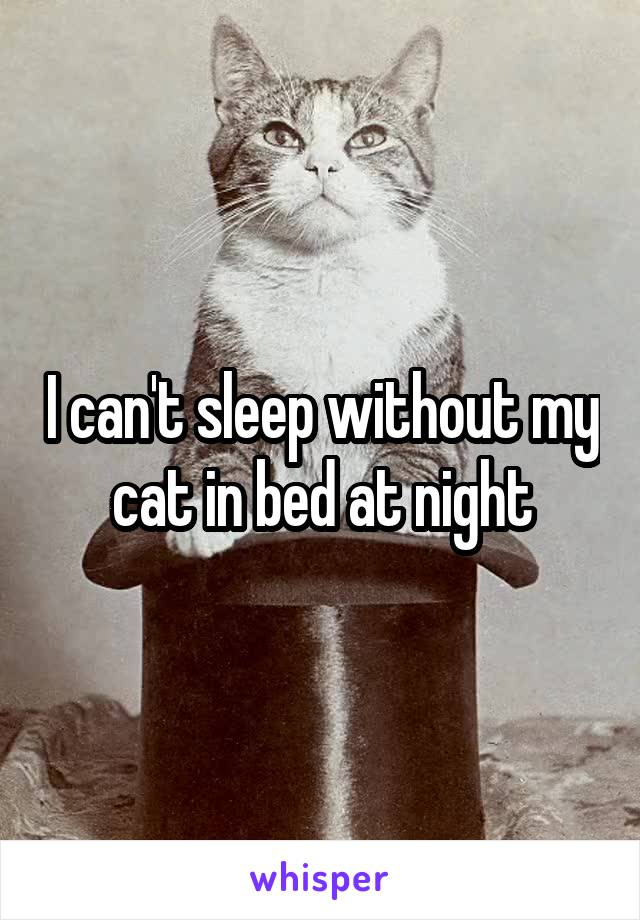 I can't sleep without my cat in bed at night