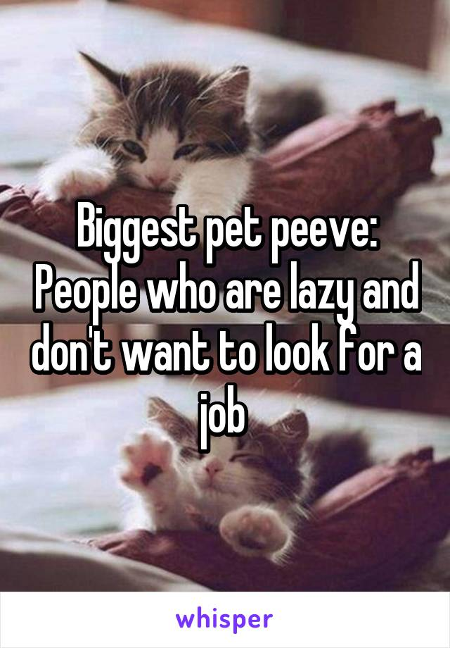 Biggest pet peeve: People who are lazy and don't want to look for a job