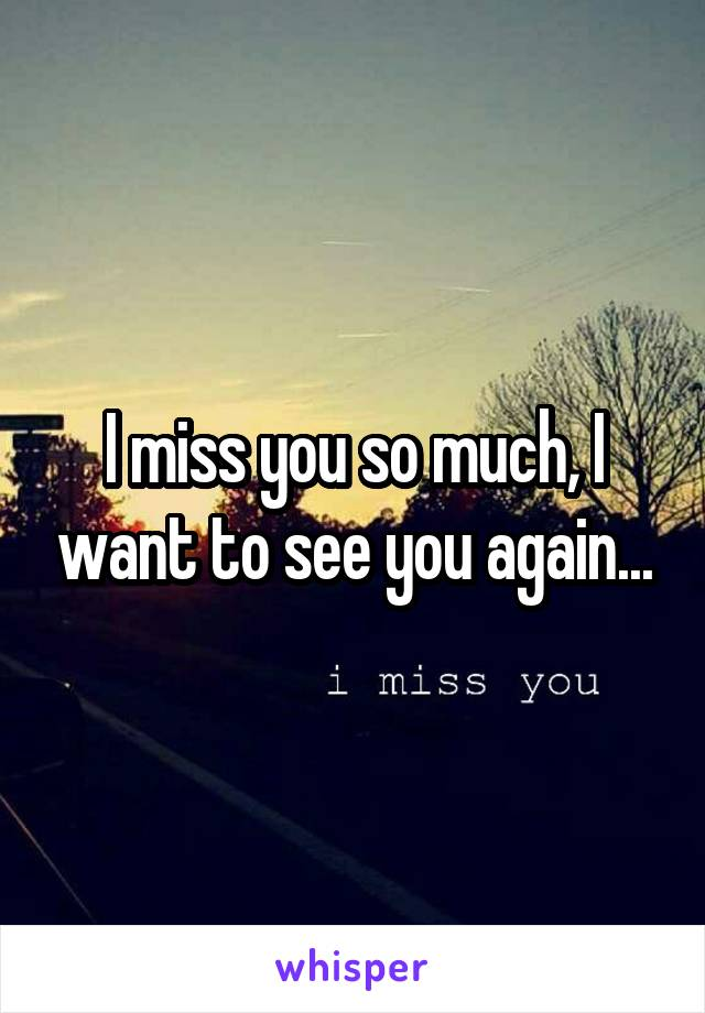 I miss you so much, I want to see you again...