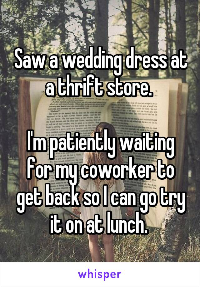 Saw a wedding dress at a thrift store.   I'm patiently waiting for my coworker to get back so I can go try it on at lunch.