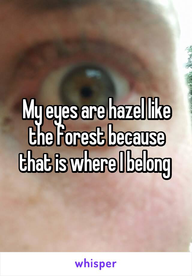 My eyes are hazel like the forest because that is where I belong