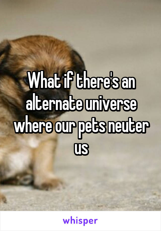 What if there's an alternate universe where our pets neuter us