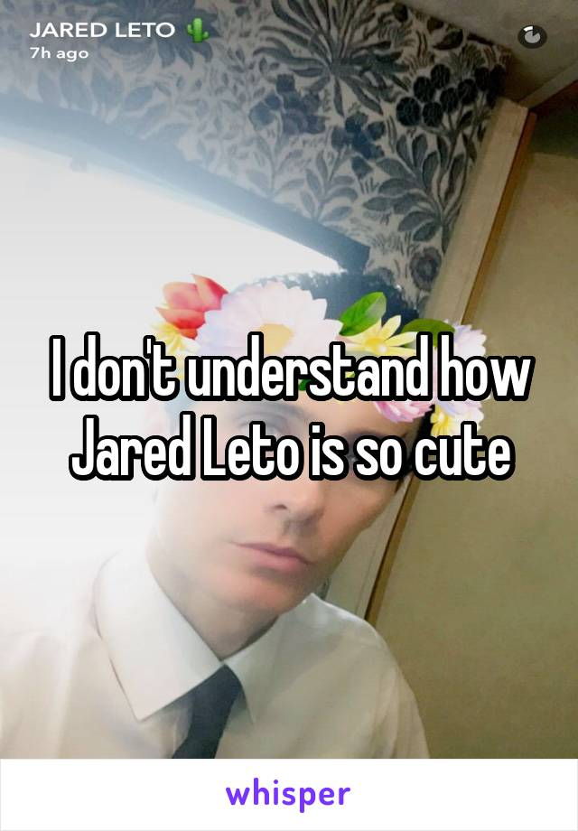 I don't understand how Jared Leto is so cute