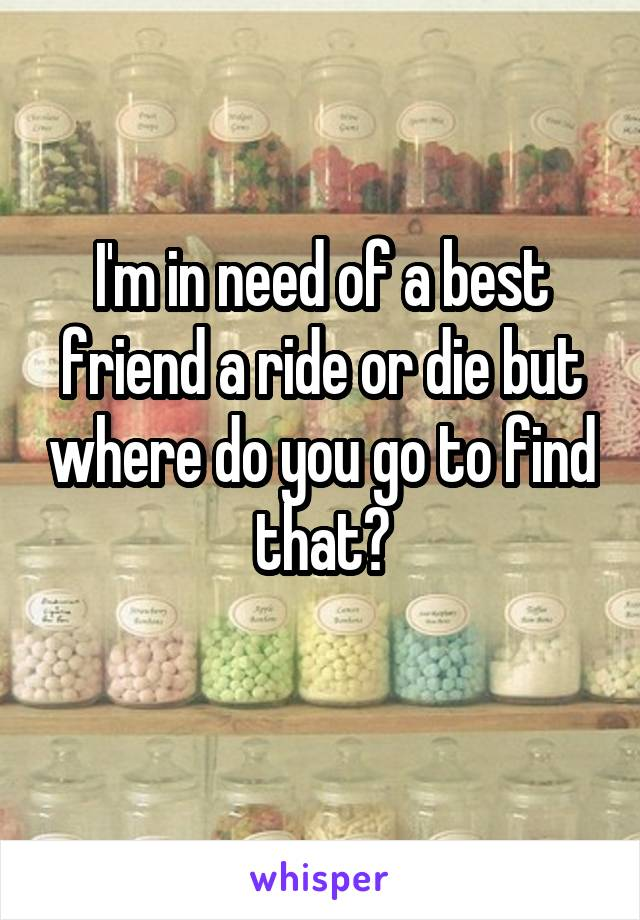 I'm in need of a best friend a ride or die but where do you go to find that?
