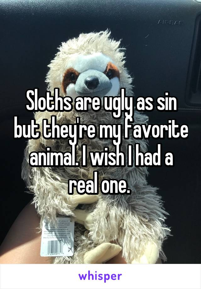 Sloths are ugly as sin but they're my favorite animal. I wish I had a real one.