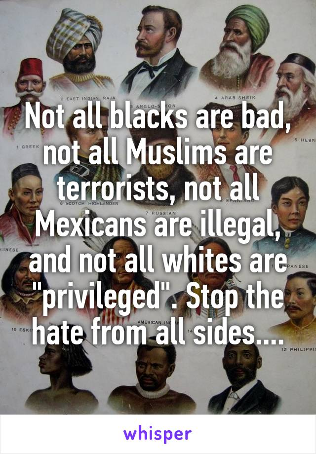 "Not all blacks are bad, not all Muslims are terrorists, not all Mexicans are illegal, and not all whites are ""privileged"". Stop the hate from all sides...."