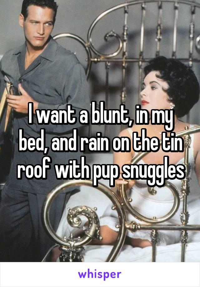 I want a blunt, in my bed, and rain on the tin roof with pup snuggles