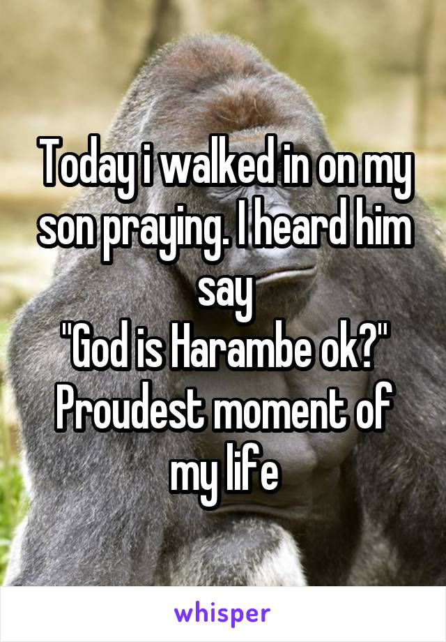 "Today i walked in on my son praying. I heard him say ""God is Harambe ok?"" Proudest moment of my life"