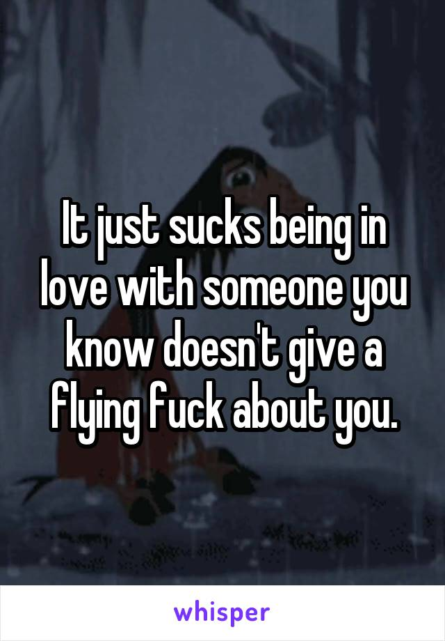 It just sucks being in love with someone you know doesn't give a flying fuck about you.