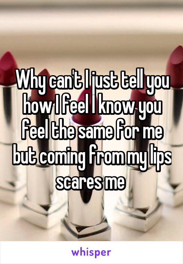 Why can't I just tell you how I feel I know you feel the same for me but coming from my lips scares me