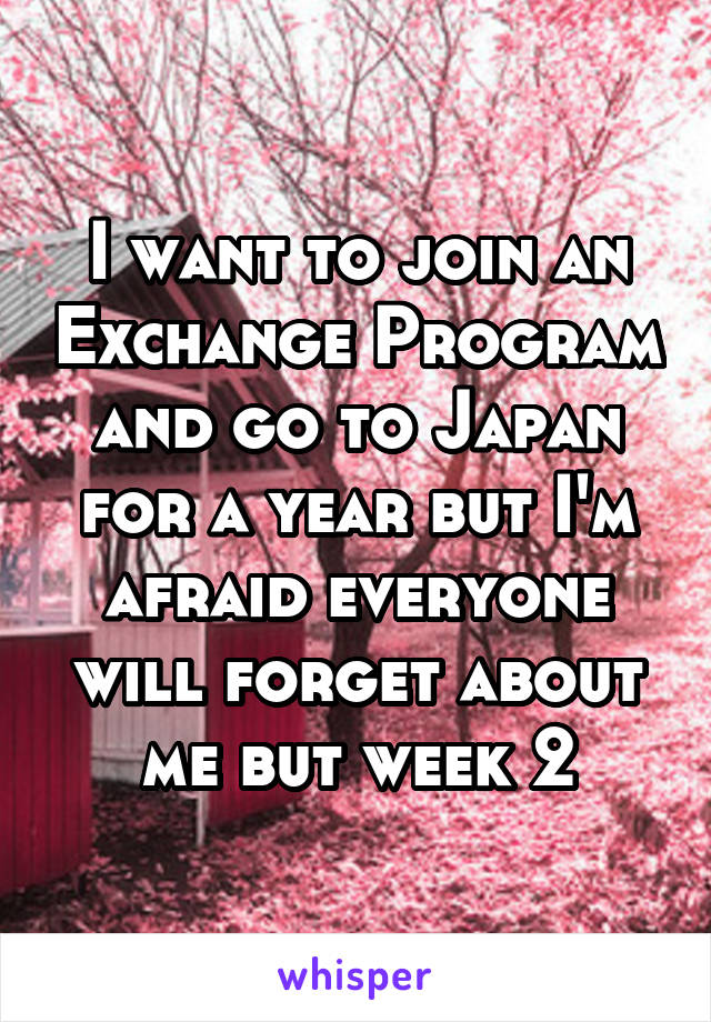 I want to join an Exchange Program and go to Japan for a year but I'm afraid everyone will forget about me but week 2
