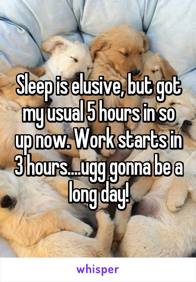Sleep is elusive, but got my usual 5 hours in so up now. Work starts in 3 hours....ugg gonna be a long day!