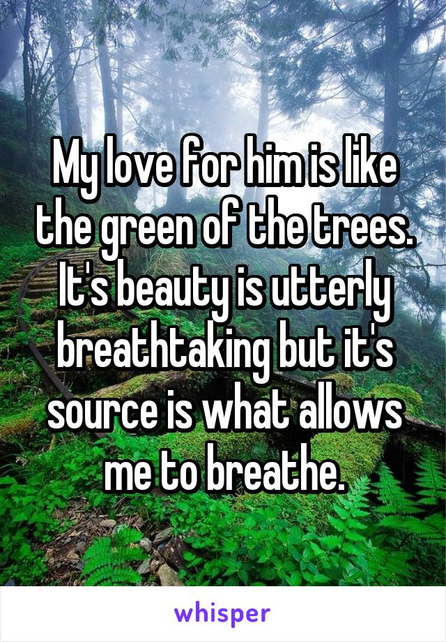 My love for him is like the green of the trees. It's beauty is utterly breathtaking but it's source is what allows me to breathe.